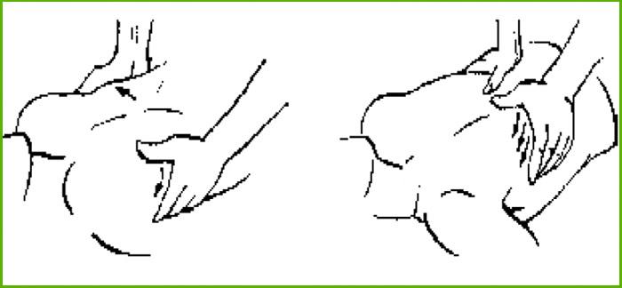 Растяжение грудной клетки