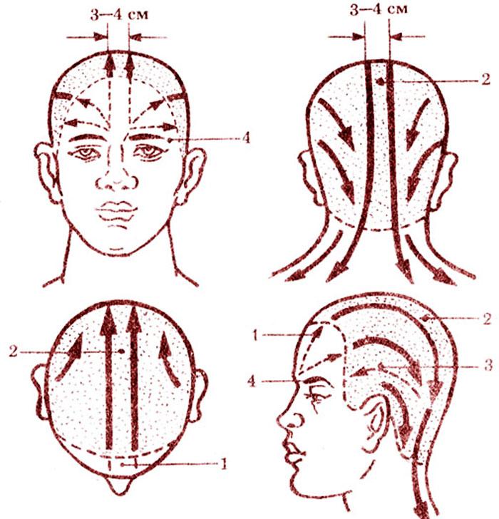 Массажные линии головы