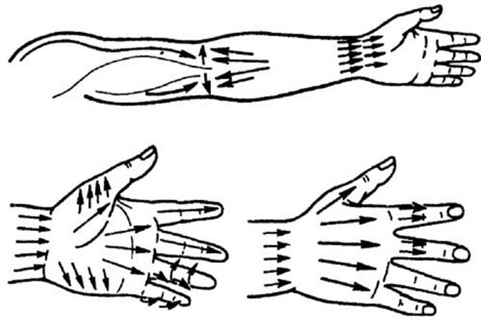 Массажные линии на руке
