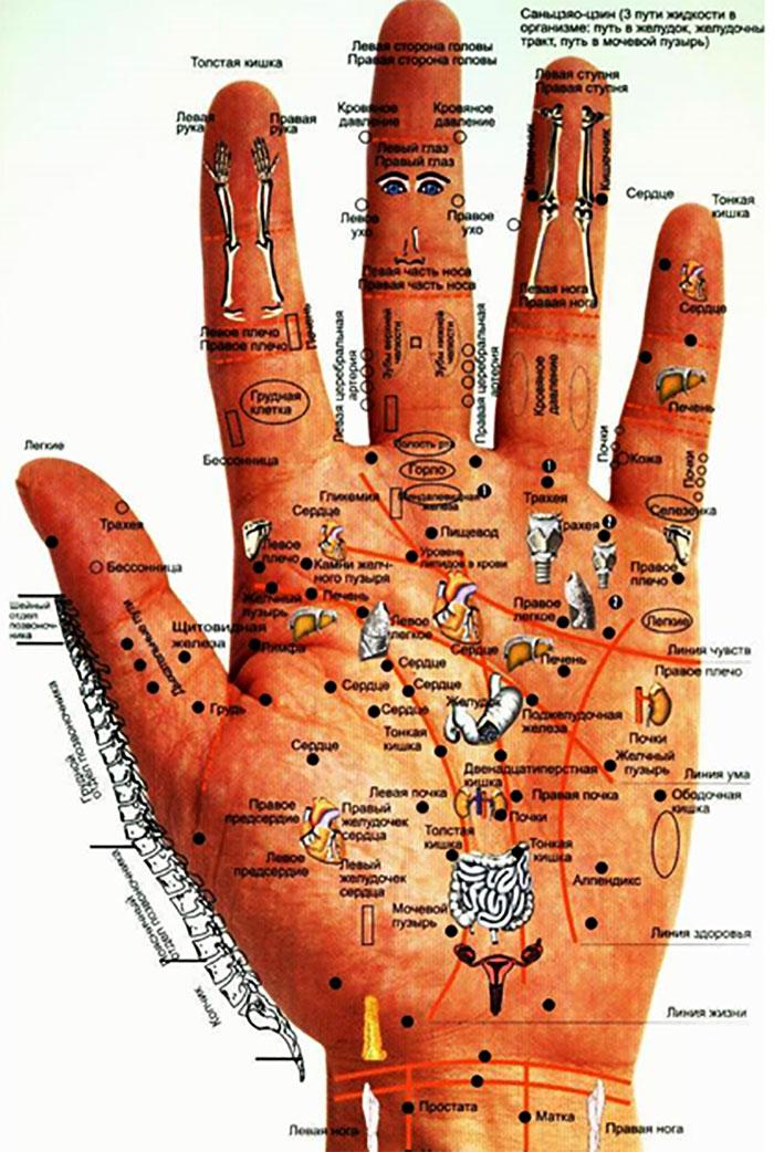 Активные точки на руке