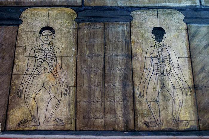 Изображения энергетических каналов человека на древних стенах