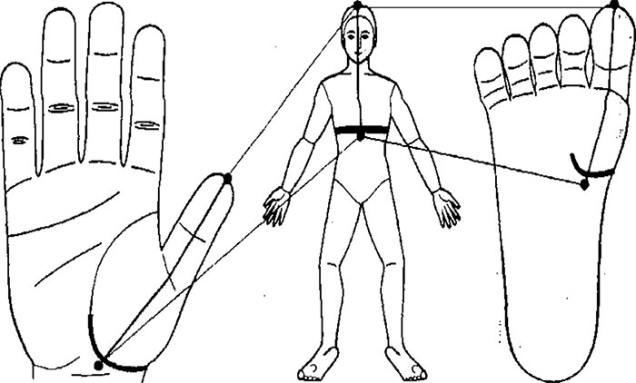 Линия диафрагмы на ладони и стопе