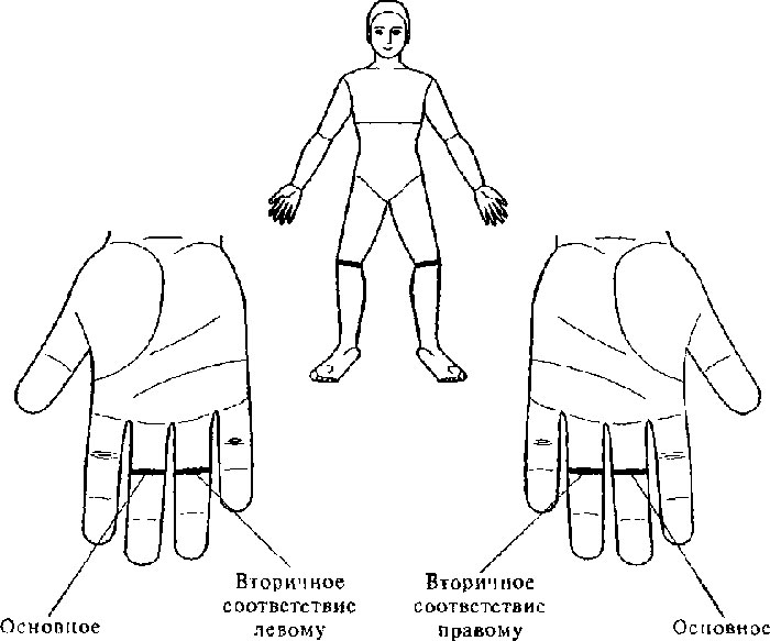 Массаж су-джок для увеличения подвижности суставов